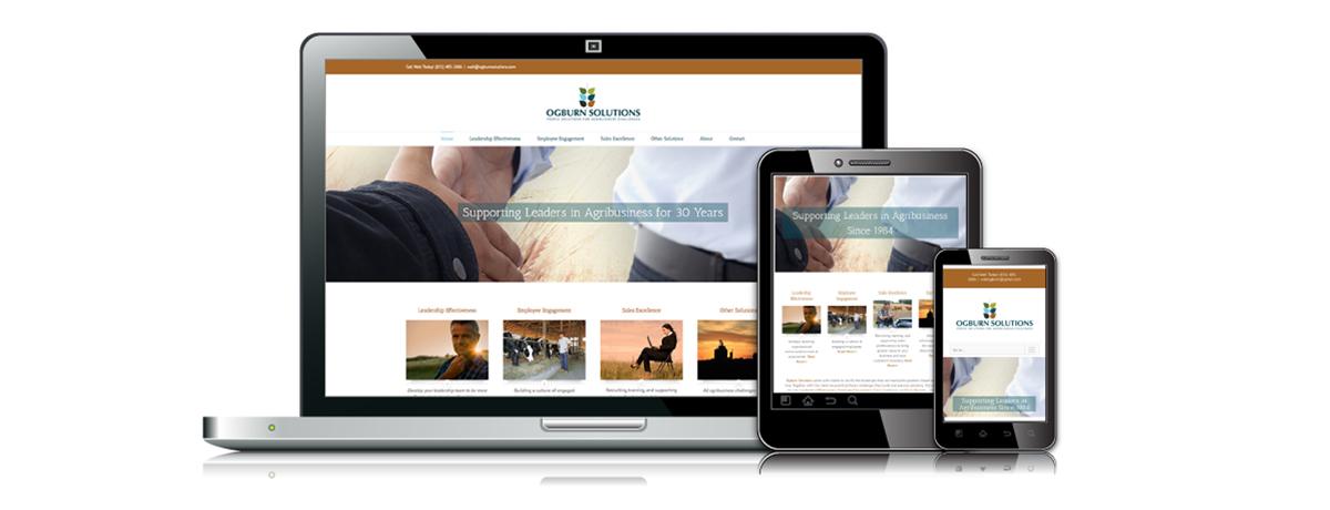 Ogburn Solutions website design agriculture wordpress stillwater minnesota
